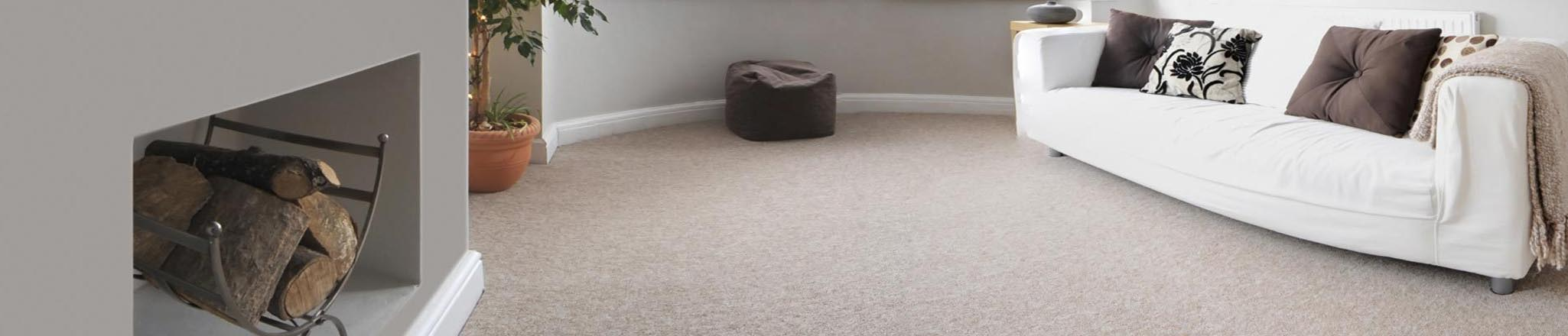 Carpet Cleaning As Low As 25 Per Room Call For Details